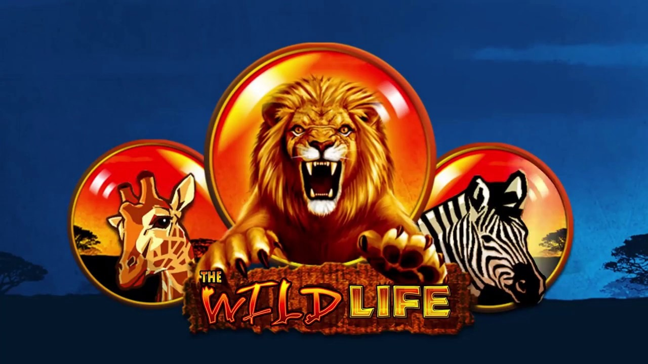 Wild Life Slot Review