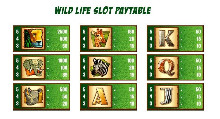 Wild Life Slot Game Symbols and Winning Combinations